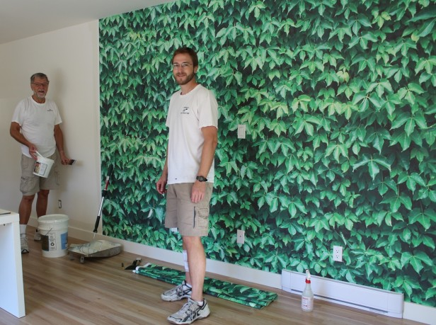The Ivy Wall Inside my Design Studio: Before & After