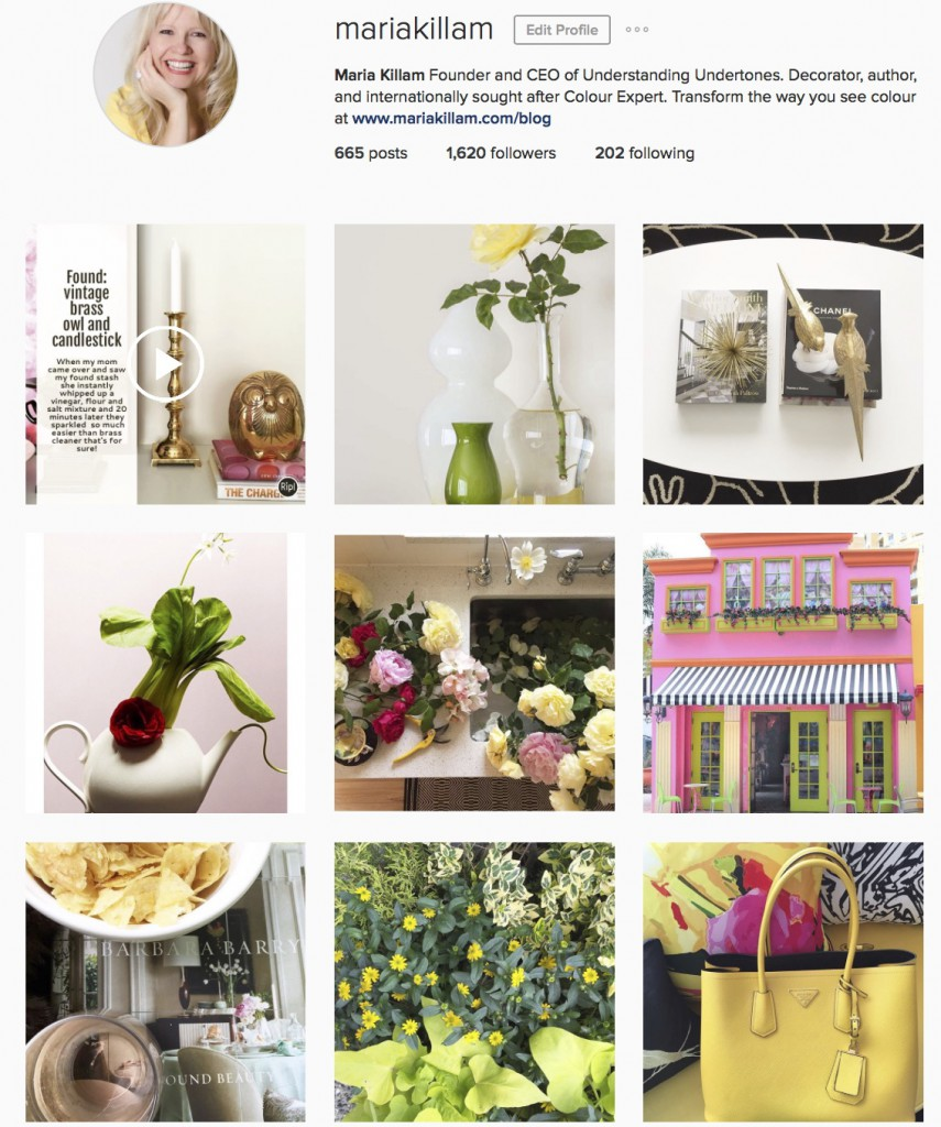 The Barbara Barry Guide to Instagram (New Pics of My House)