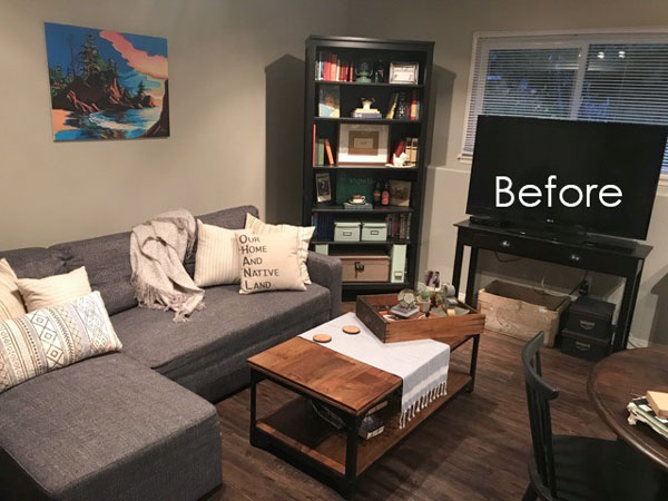 How to brighten a dark living room BEFORE
