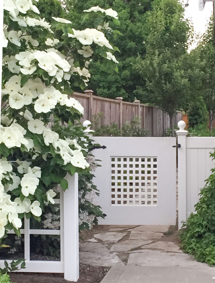 Do S And Don Ts For Choosing The Right Fence Colour
